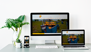 desarrollo web de venta de miel